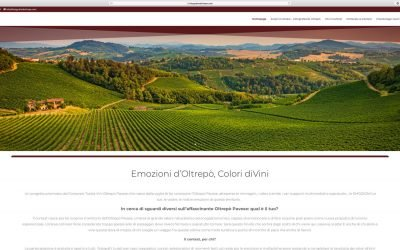 OLTREPÒ PAVESE, A TERRITORY TO BE PHOTOGRAPHED. WITH THE EMOTION OF WINE