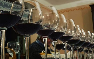 TASTING AND DISCOVER OLTREPÒ PAVESE